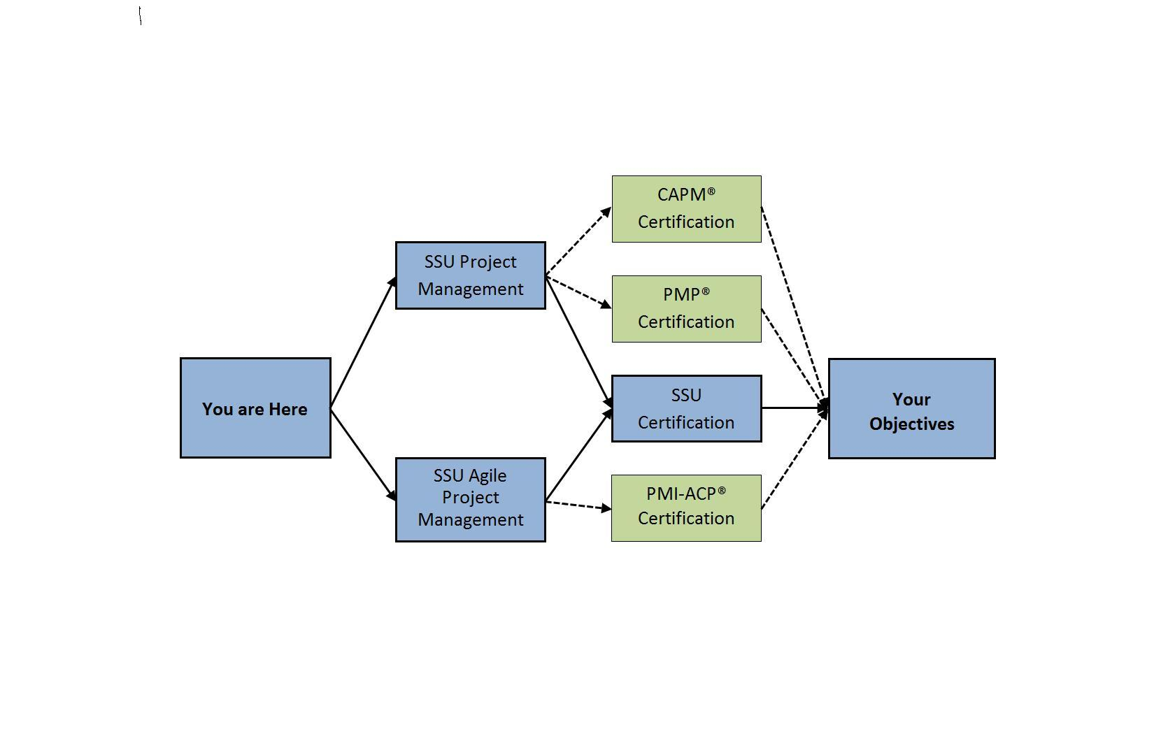 Something About Pm Certifications Project Schedule Professional